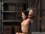 Hot Bondage Clip