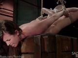 Rough Bondage Punishment
